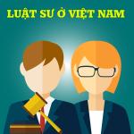 Nghị định 123/2013/NĐ-CP hướng dẫn và biện pháp thi hành Luật luật sư