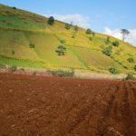 Bồi thường khi bị thu hồi đất nông nghiệp