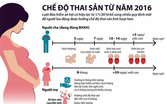 Hướng dẫn chuẩn bị hồ sơ hưởng chế độ thai sản