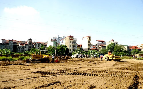 Căn cứ để xác định loại đất