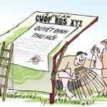 Thu hồi đất do chấm dứt việc sử dụng đất trái pháp luật