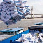 Điều kiện kinh doanh xuất khẩu gạo